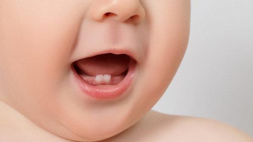 BABY TEETH BASICS